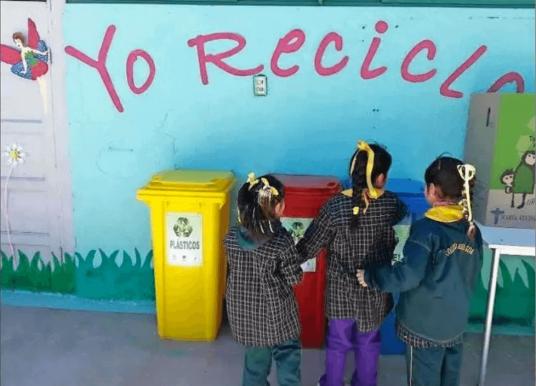 Los contenidos verdes que aprenden los escolares. Opina Patricia López